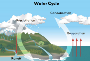 Ask your child to describe The Water Cycle.